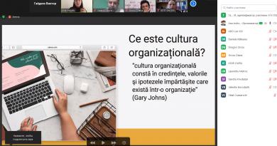 Organizational policies in non-profit organizations